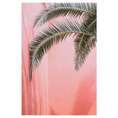 Palm op roze poster