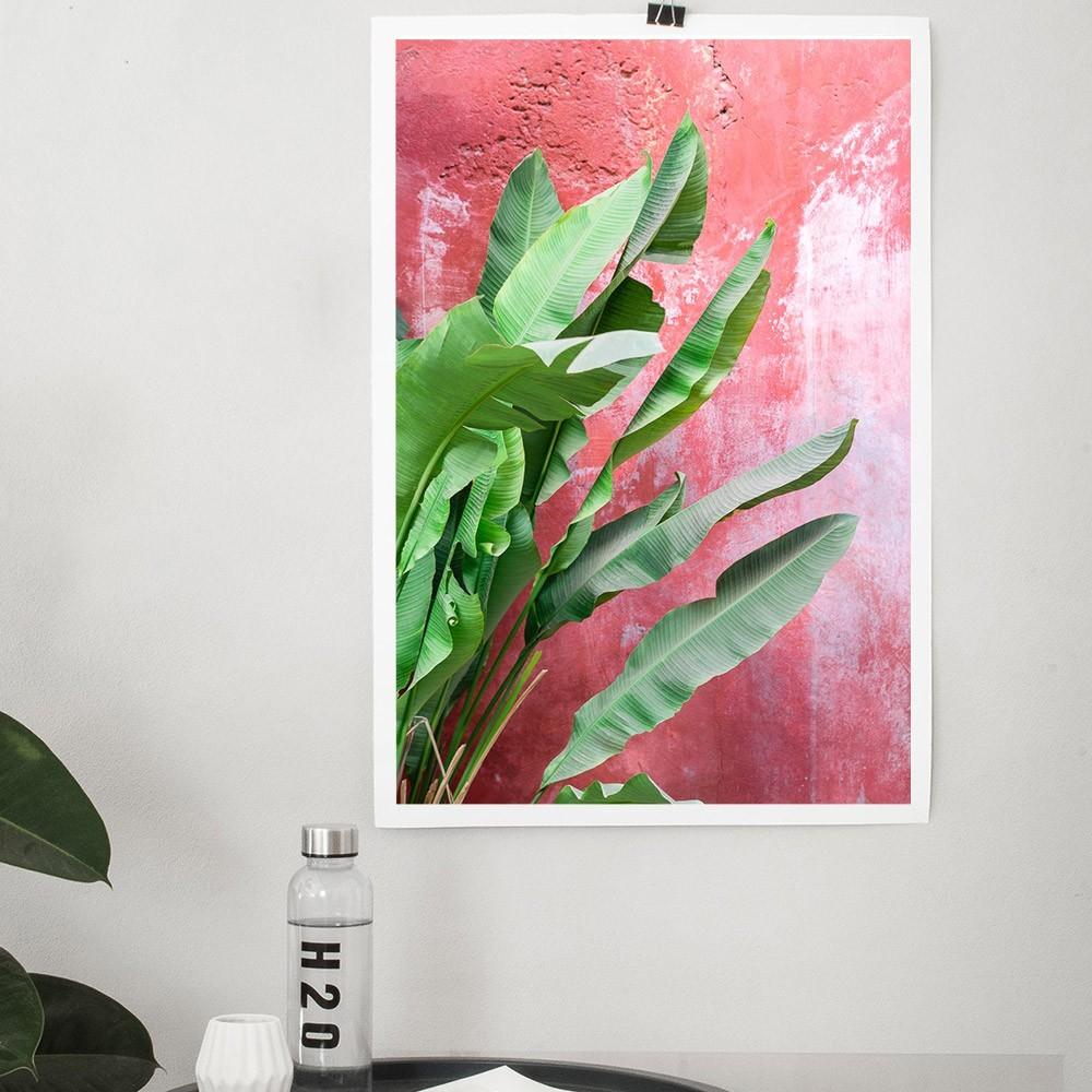 Bananiers sur mur rouge poster David & David Studio